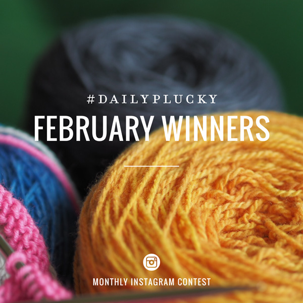 February Daily Plucky Winners The Plucky Knitter